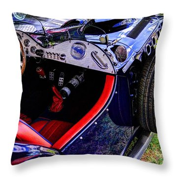 Allard Throw Pillow