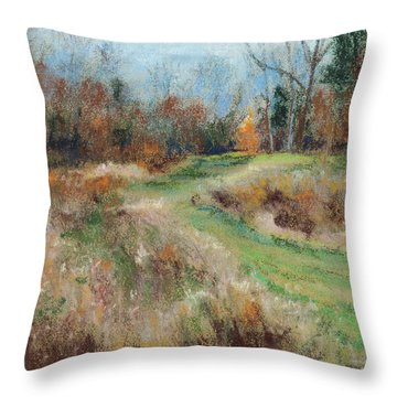 Allardale Impressions Throw Pillow