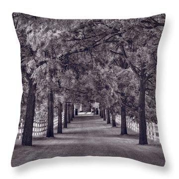 Allee Way Bw Throw Pillow by Steve Gadomski