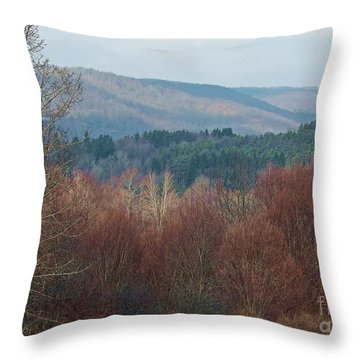 Allegany Rhapsody Throw Pillow