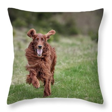 Allegro's March Throw Pillow