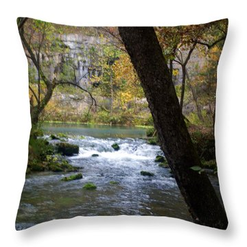 Alley Spring Branch 2 Throw Pillow by Marty Koch
