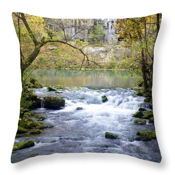 Alley Spring Branch 3 Throw Pillow by Marty Koch
