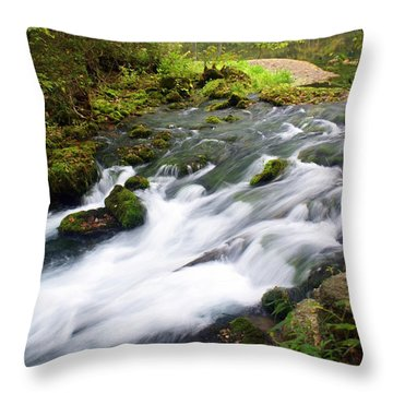 Alley Spring Branch Throw Pillow by Marty Koch