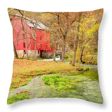 Alley Spring Throw Pillow