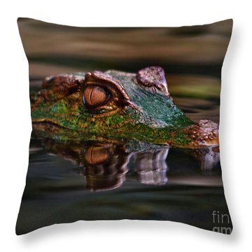 Alligator Above Water Reflection Throw Pillow by Loriannah Hespe