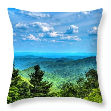 Alligator Back Overlook Throw Pillow by Dale R Carlson