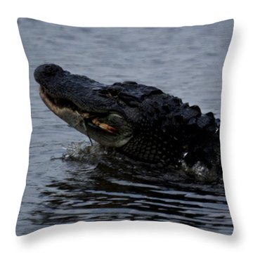 Alligator Eating A Crab Throw Pillow