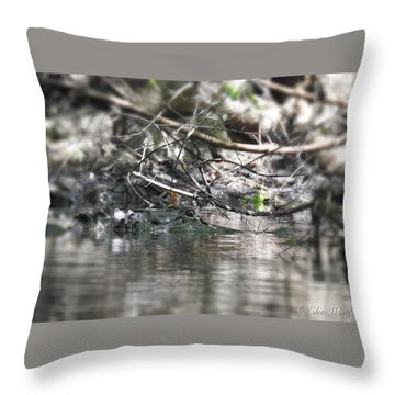 Alligator In Silver Throw Pillow