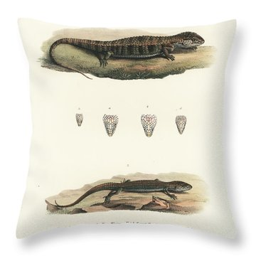 Alligator Lizards From Mexico Throw Pillow