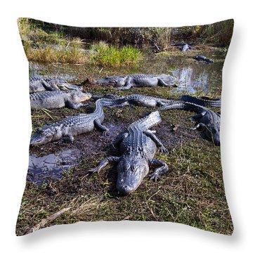 Alligators 280 Throw Pillow