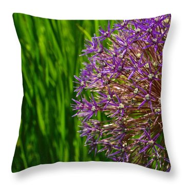 Allium Explosion Throw Pillow by Tim Good