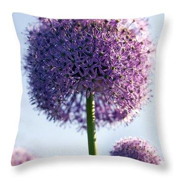 Allium Flower Throw Pillow by Tony Cordoza