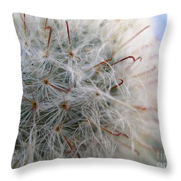 Throw Pillow featuring the photograph Allium Sativum by Jolanta Anna Karolska