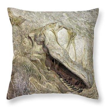 Camarasaurus Throw Pillow
