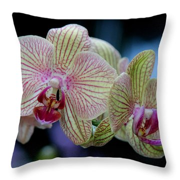 Almightily Throw Pillow