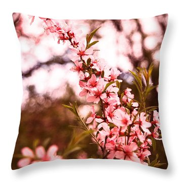 Almonds1 Throw Pillow