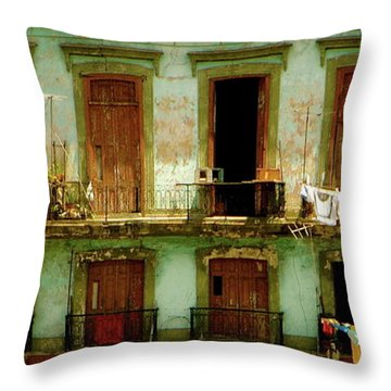 Almost Dry Throw Pillow by Valerie Rosen