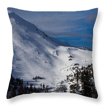 Arapahoe County Throw Pillows