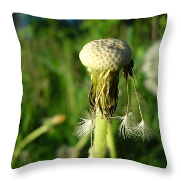 Almost Gone Dandelion Seeds Throw Pillow by Kent Lorentzen