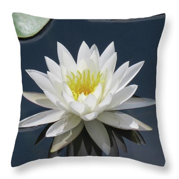Almost Perfect Throw Pillow