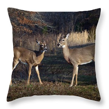 Almost Spring Throw Pillow by Bill Stephens