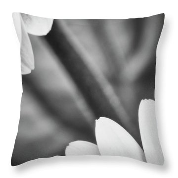 Almost Touching Throw Pillow