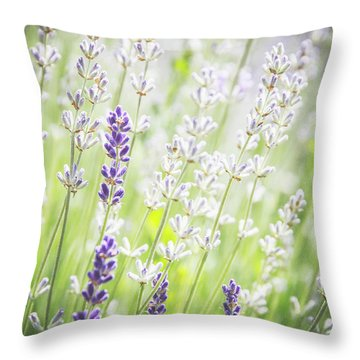 Almost Wild..... Throw Pillow