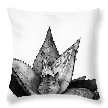 Aloe Cactus Throw Pillow