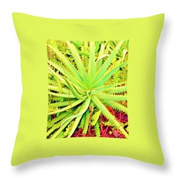Aloha Aloe In Puna In Lime Throw Pillow