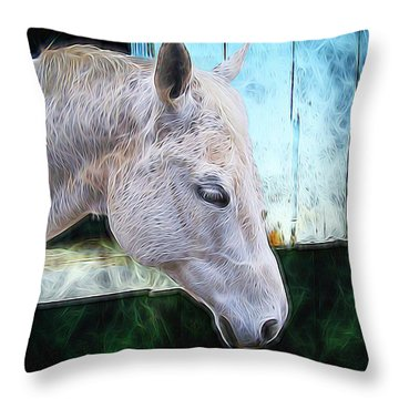 Throw Pillow featuring the photograph Alone  by Aaron Berg