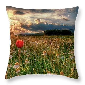 Alone Among Many Throw Pillow