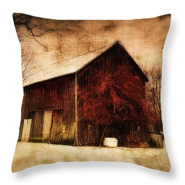 Alone At Sunset Throw Pillow