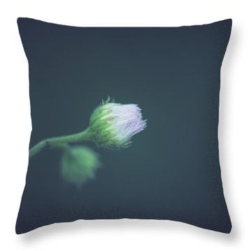 Throw Pillow featuring the photograph Alone In Dreams by Shane Holsclaw