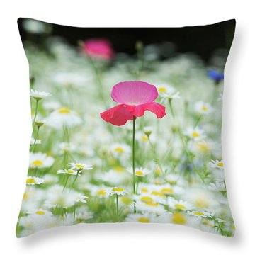 Throw Pillow featuring the photograph Alone In The Crowd by Tim Gainey