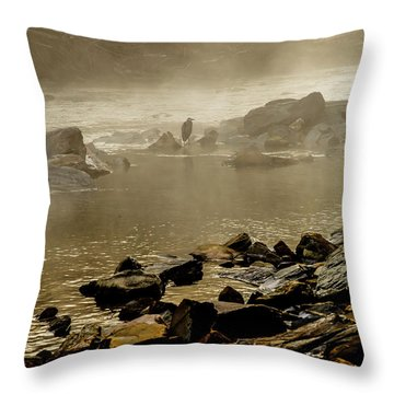 Throw Pillow featuring the photograph Alone In The Mist by Iris Greenwell