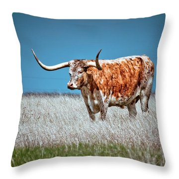 Throw Pillow featuring the photograph Alone On The Trail by Linda Unger