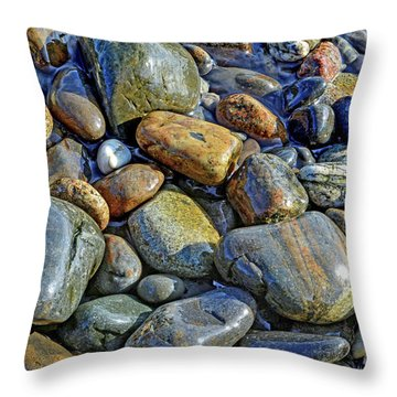 Alone With Cobblestone Throw Pillow