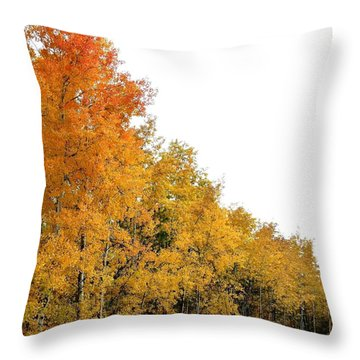 Along Broadwater Road Throw Pillow