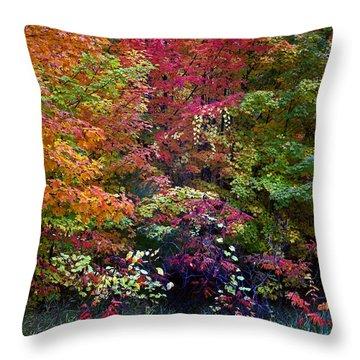 Along M37 In Autumn 2014 Throw Pillow