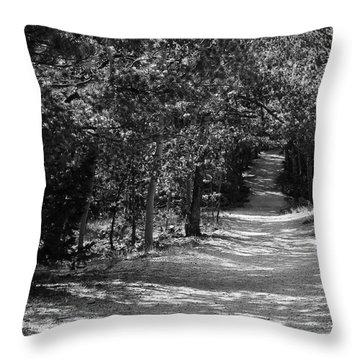 Along The Barr Trail Throw Pillow