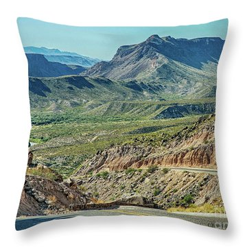 Along The Border Throw Pillow