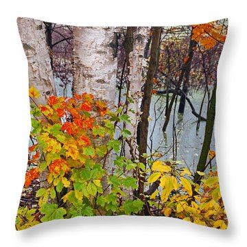 Along The Breezeway In Autumn 2014 Throw Pillow