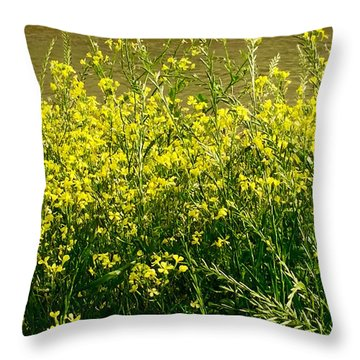 Along The Byou Throw Pillow