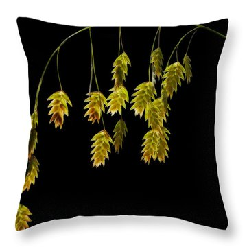 Along The Curve Throw Pillow