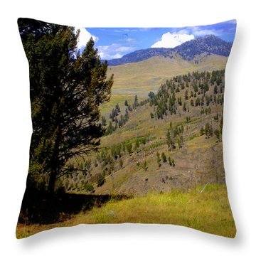 Along The Hell Roaring Creek Trail Throw Pillow by Marty Koch