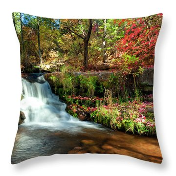 Along The Horton Trail Throw Pillow by Anthony Citro