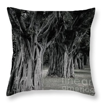Along The Journey Throw Pillow