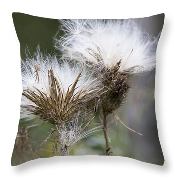 Throw Pillow featuring the photograph Along The Meadow Trail by Andrew Pacheco