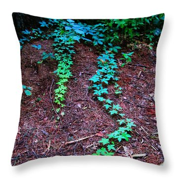 Along The Path  Throw Pillow